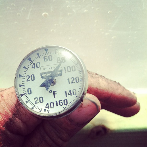 The temperature in the greenhouse