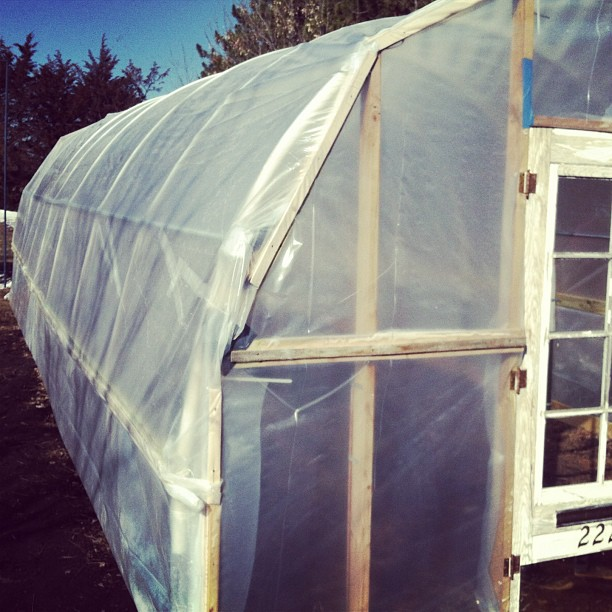 The Greenhouse ready for the new year